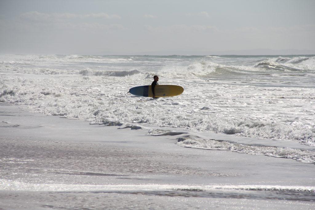 MBSR Surfer