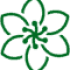life-coach-flower-logo